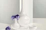 Paarse-viooltjes